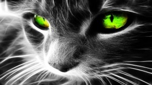 Magical-Cat-with-Green-Eyes